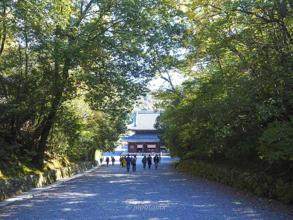 京都 御寺泉涌寺の混雑具合