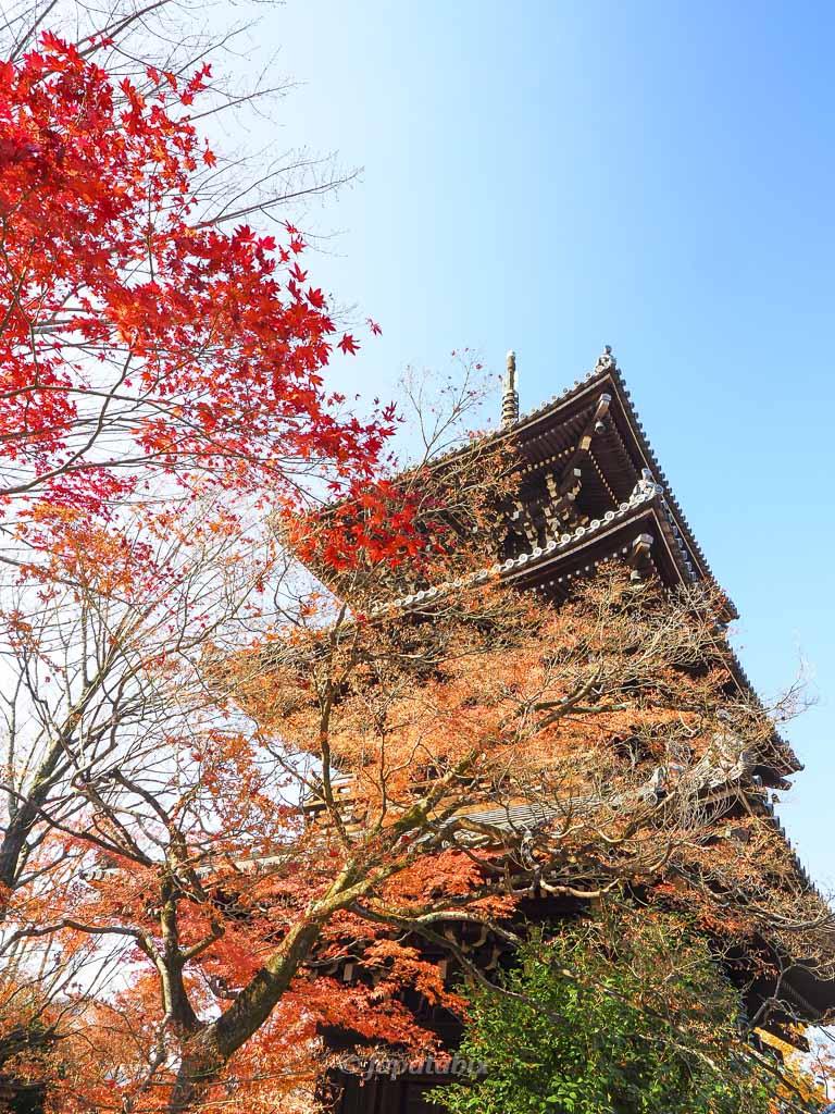 真如堂(真正極楽寺)三重塔の紅葉