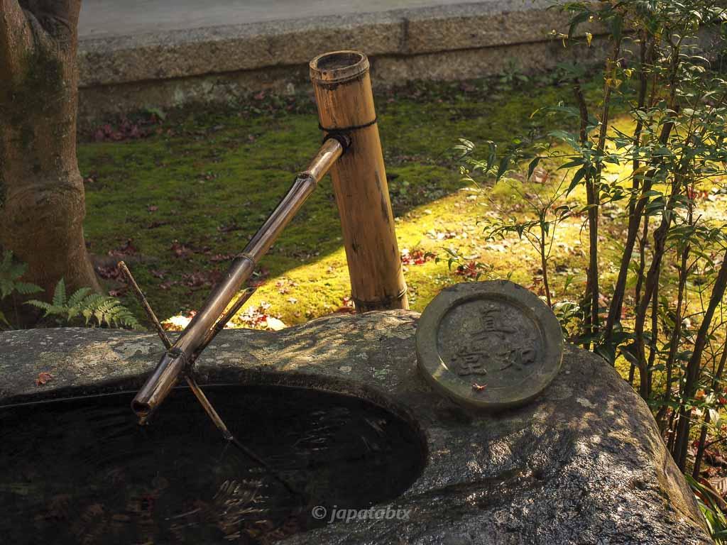 京都 真如堂(真正極楽寺)のつくばい