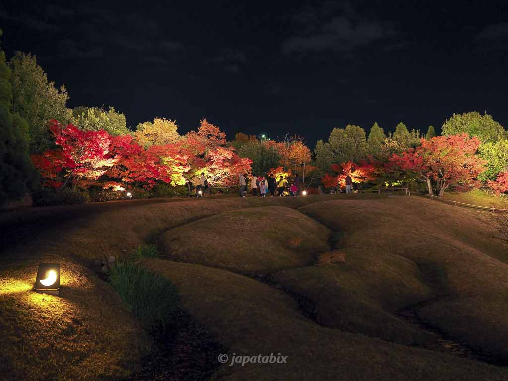 京都 梅小路公園の紅葉まつり