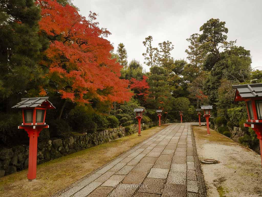 京都 敷地神社(わら天神宮) 境内の紅葉