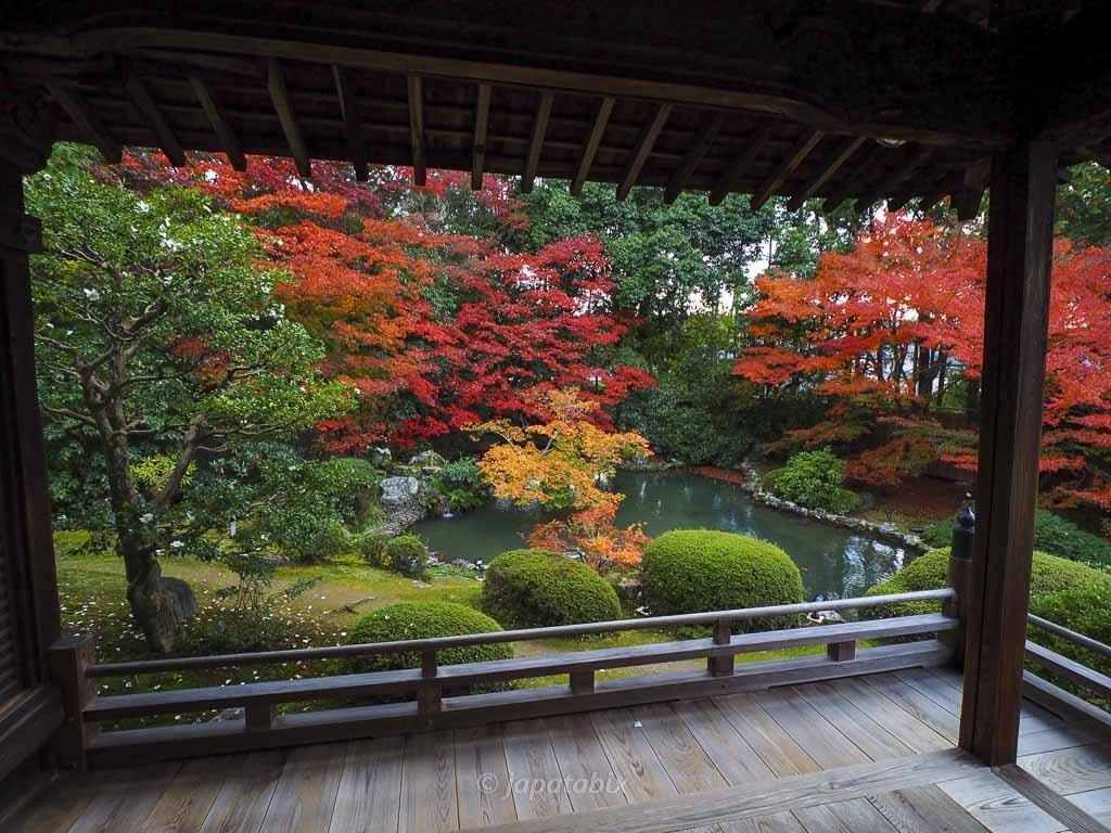京都 随心院の紅葉
