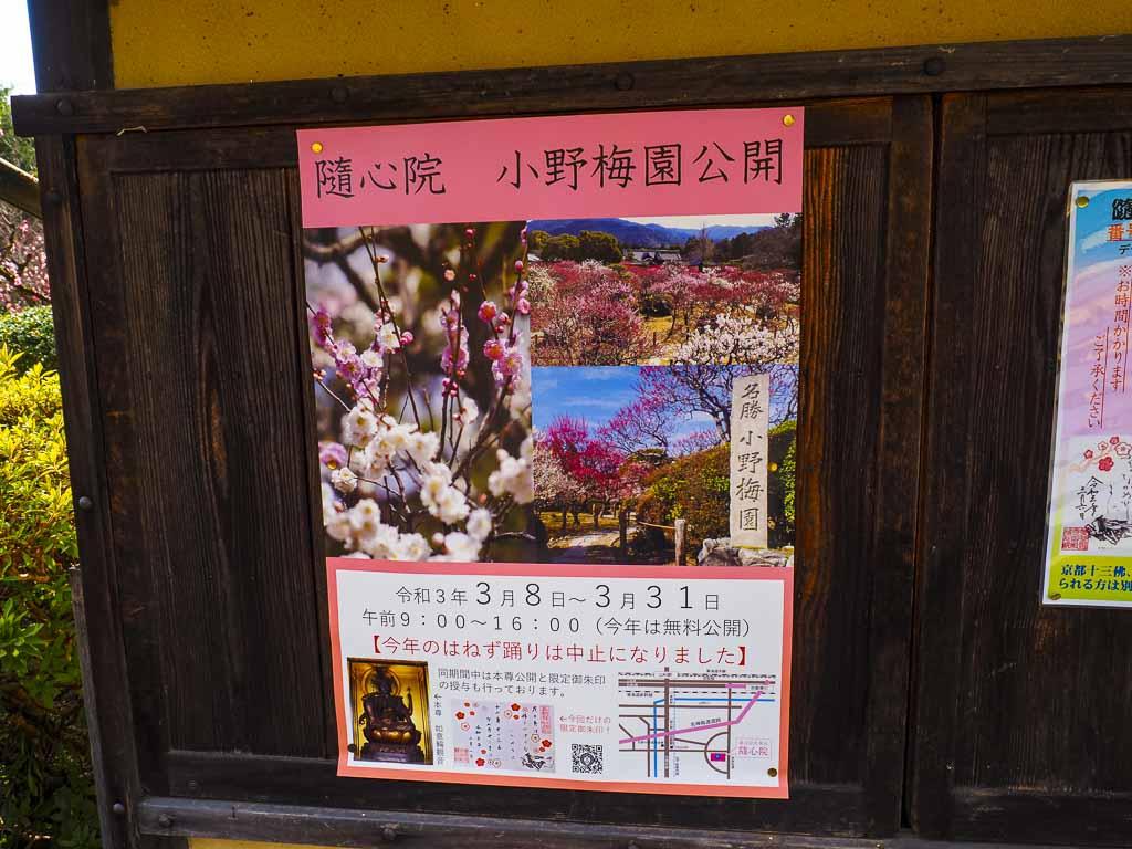 随心院 3月の小野梅園