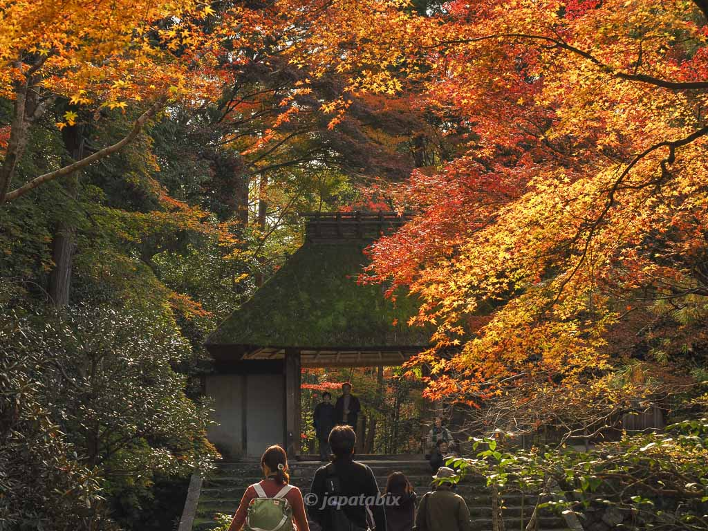 法然院の紅葉 山門