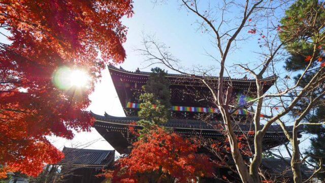 京都 くろ谷 金戒光明寺の紅葉