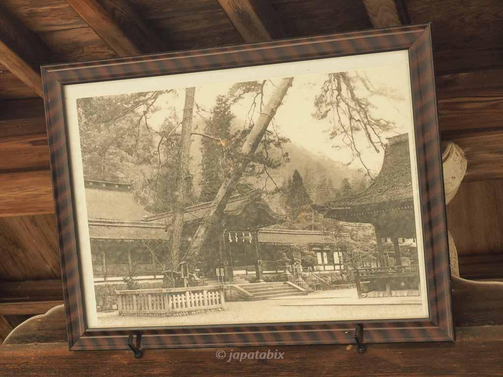 京都 松尾大社の中門・本殿 昔の写真