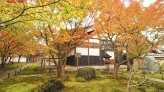 京都 大徳寺 黄梅院の紅葉