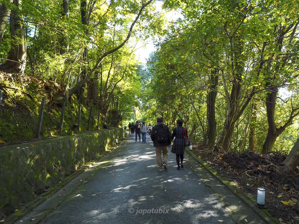 京都 雲龍院まで徒歩で行く