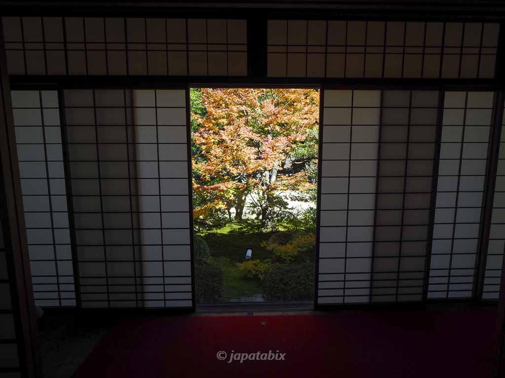 京都 雲龍院の紅葉