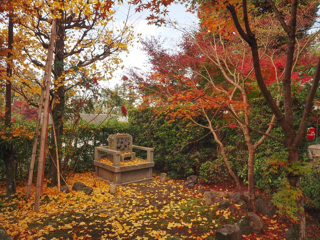 京都 安楽寺の紅葉