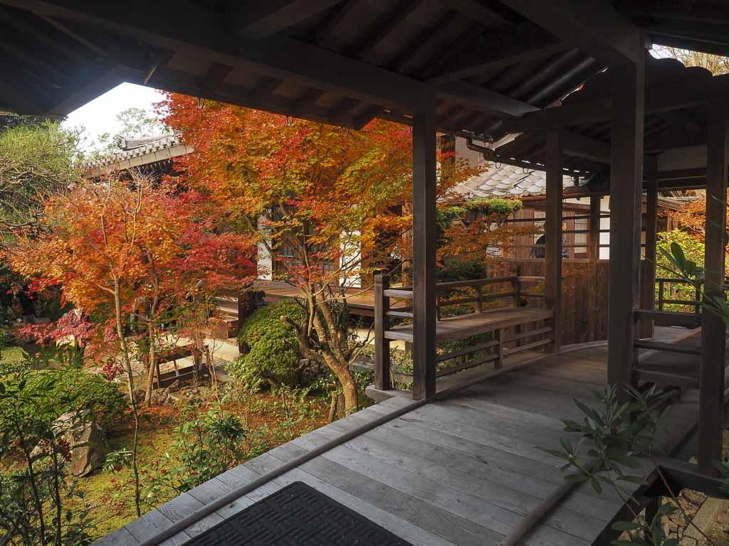 京都 安楽寺 客殿 カフェスペース椛