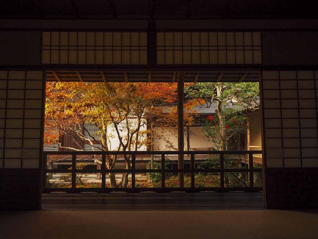 秋の安楽寺 紅葉の景色