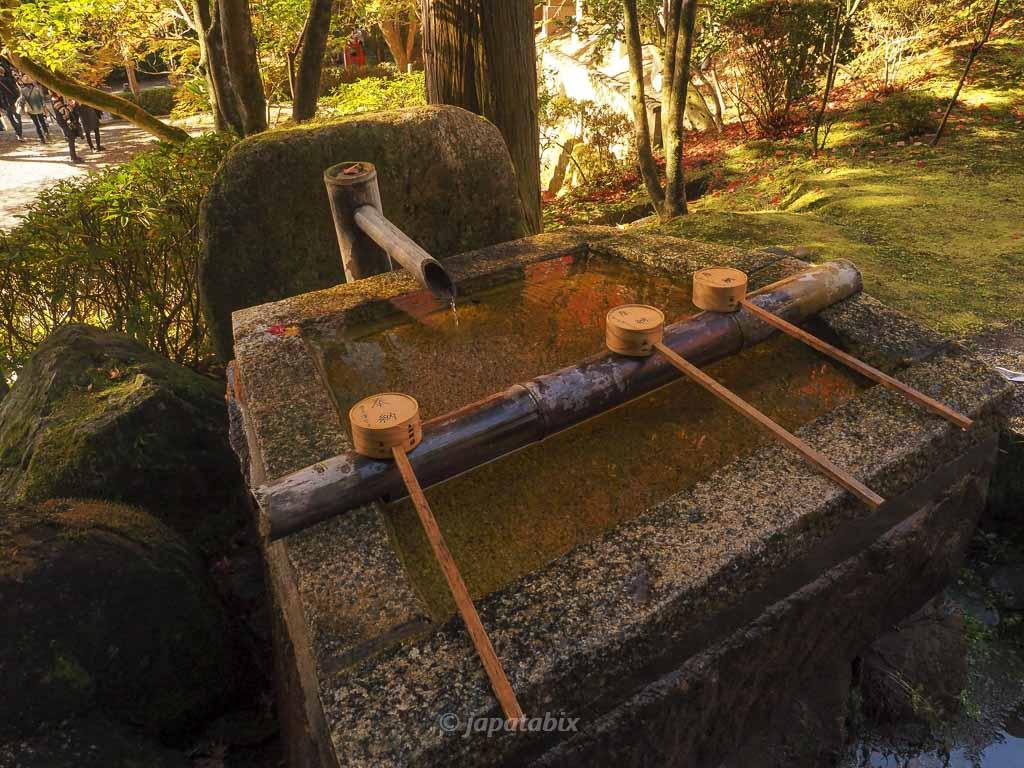 今熊野観音寺 手水舎