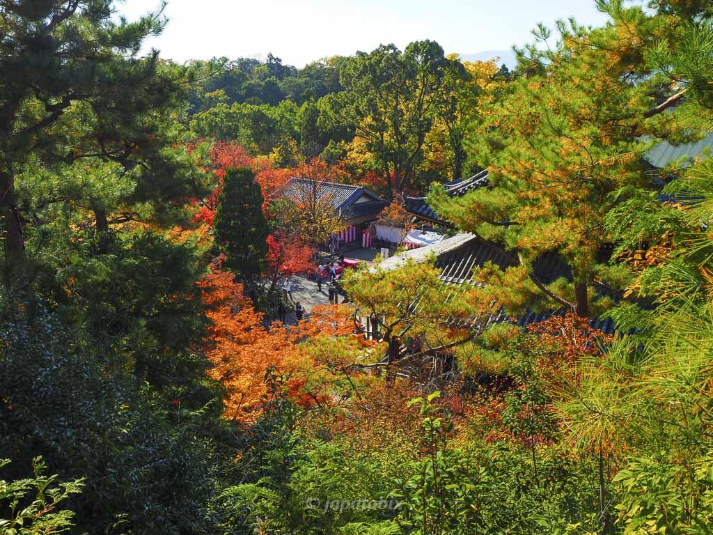 今熊野観音寺 医聖堂からの眺望