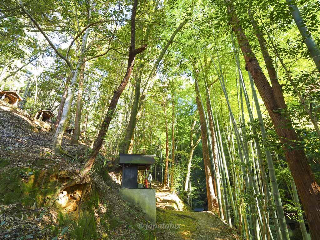 今熊野観音寺 医聖堂までの道のり